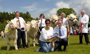 Newry Agricultural Show and Family Festival @ TBC