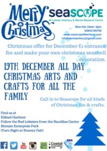 Christmas Themed Arts and Crafts @ Seascope Lobster Hatchery | Kilkeel | United Kingdom