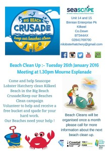 BIG Beach Crusade - Beach Clean Up @ Kilkeel | United Kingdom